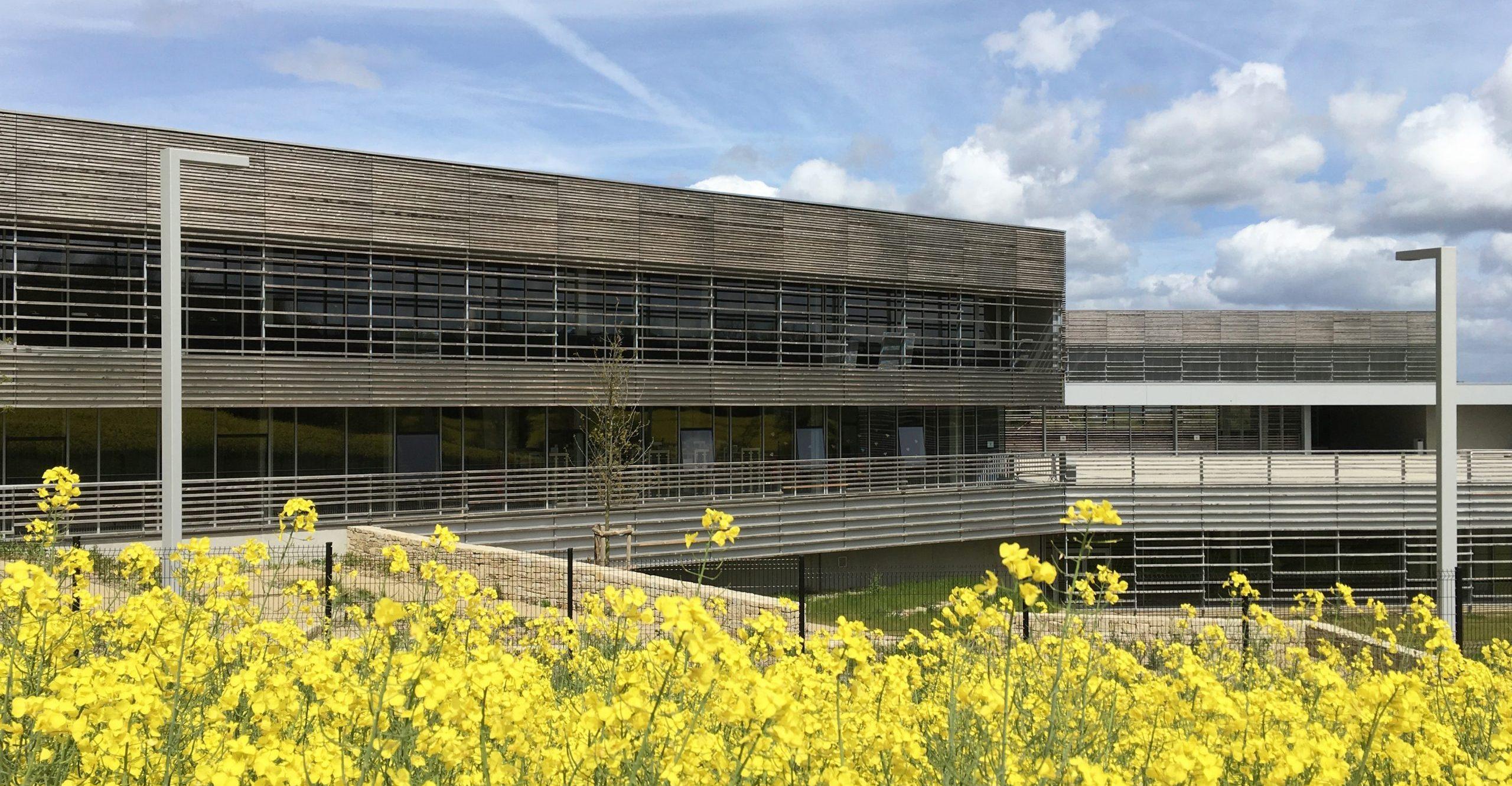 Collège Simone Veil - Elven